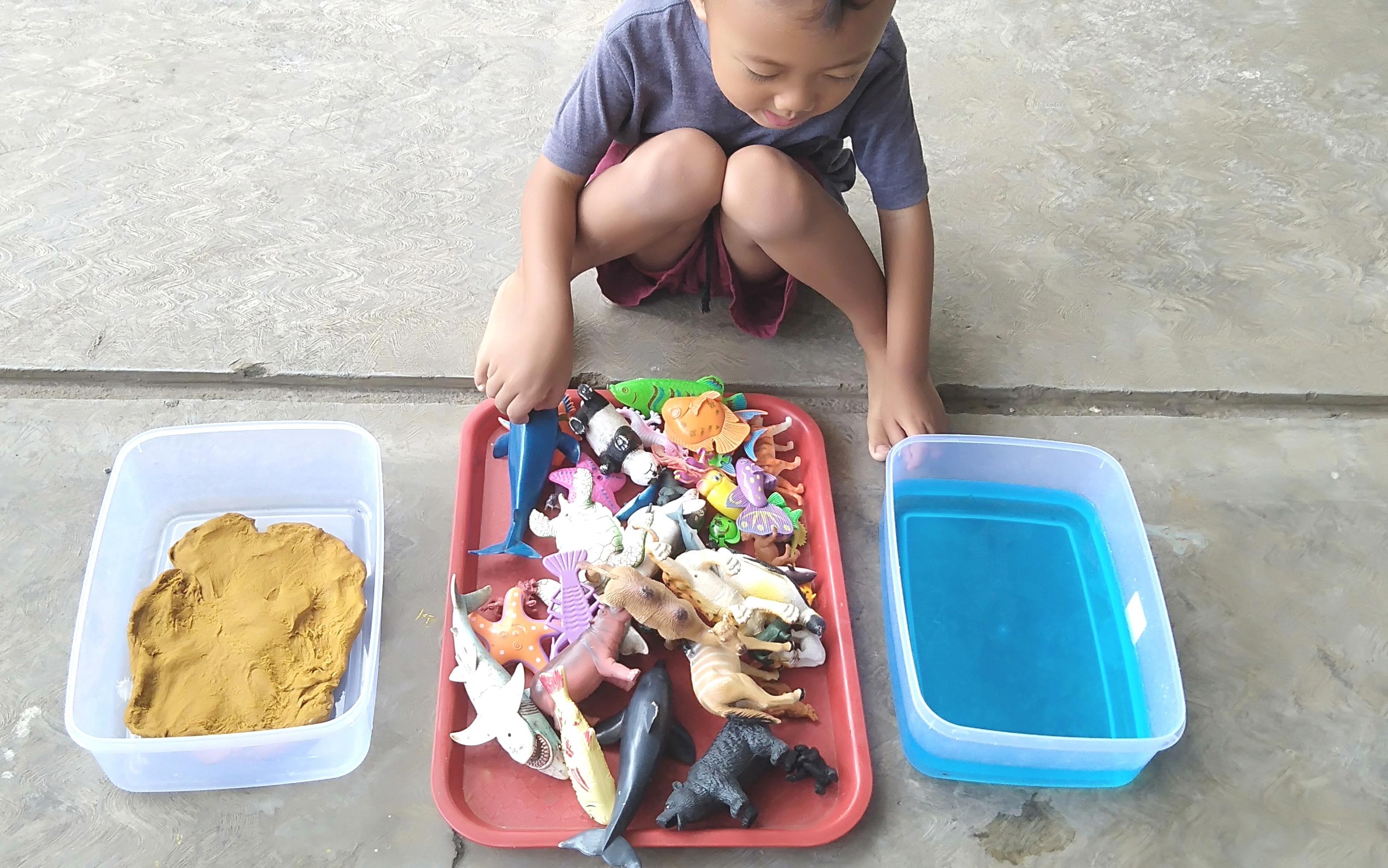 ide bermain mengenal hewan laut air darat